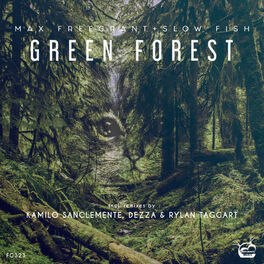 Album cover of Green Forest 2019