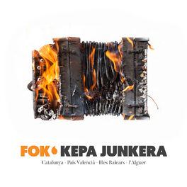 Album cover of Fok