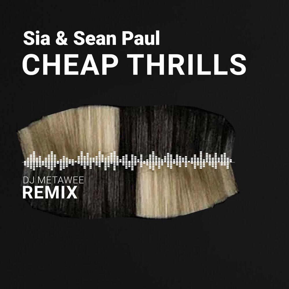 Cheap Thrills (DJ Metawee Unofficial Remix) - Sia & Sean Paul