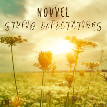 Stupid Expectations cover