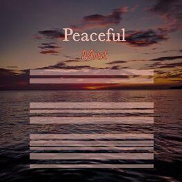 Album cover of # 1 Album: Peaceful Mist