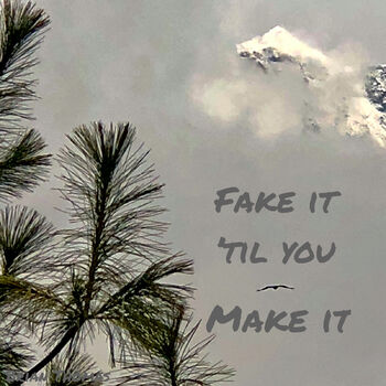 Fake It Til You Make It cover