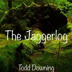 The Jaggerlog