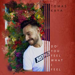 Album cover of Do You Feel What I Feel