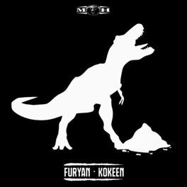 Album cover of Kokeen