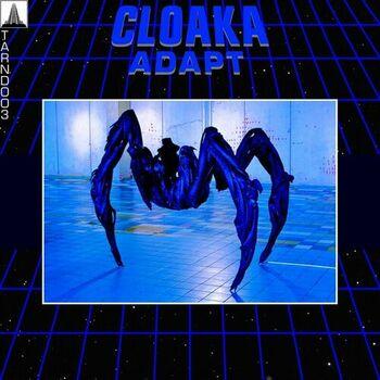 Adapt cover