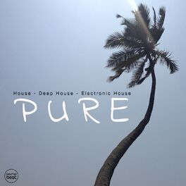 Album cover of Pure, Vol. 3 (House - Deep House - Electronic House - Vocal House)