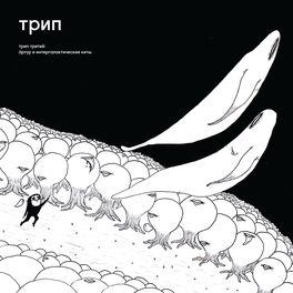 Album cover of Arthur an the Intergalactic Whales