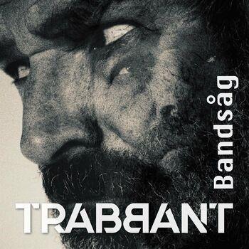 Bandsåg cover