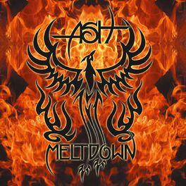 Album cover of Meltdown