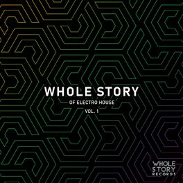 Album cover of Whole Story Of Electro House Vol. 1