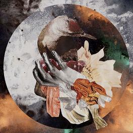 Album cover of Fake