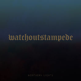 Album cover of Northern Lights