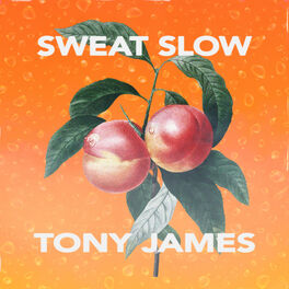 Album cover of Sweat Slow
