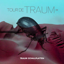 Album cover of Tour De Traum VIII Mixed by Riley Reinhold