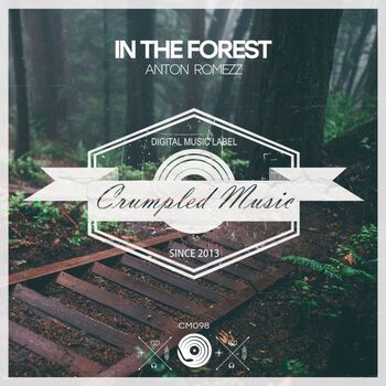 In The Forest cover