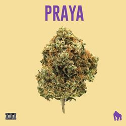 JayA Luuck, Predella, Pedro Lotto, White Monkey Recordings, Paiva Prod – Praya 2020 CD Completo