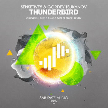 Thunderbird (Original Mix) cover