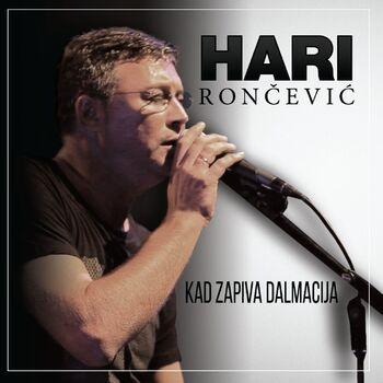 Buntovnik S Razlogom cover