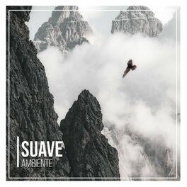 Album cover of # 1 Album: Suave Ambiente