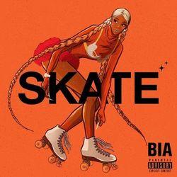 Download BIA - SKATE 2020