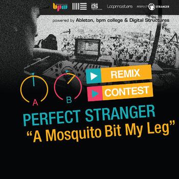 A Mosquito Bit My Leg cover