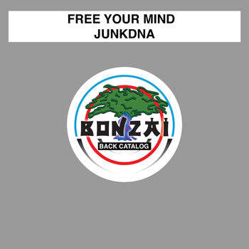 Free Your Mind (Original Mix) cover