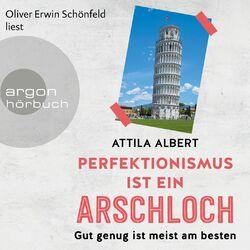 Perfektionismus ist ein Arschloch - Gut genug ist meist am besten (Ungekürzt) Audiobook