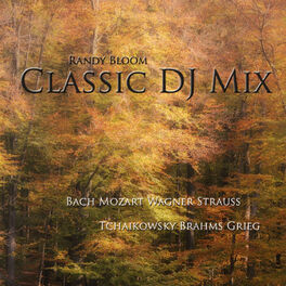 Album cover of Classic DJ Mix - Piano & Orchestra