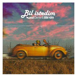 Album cover of Bil İstedim
