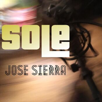 Sole cover