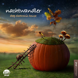 Album cover of Nachtwandler, Vol. 1 - Deep Electronic House