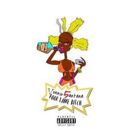 Album cover of Poor Lame Bitch