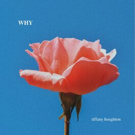 Album cover of Why
