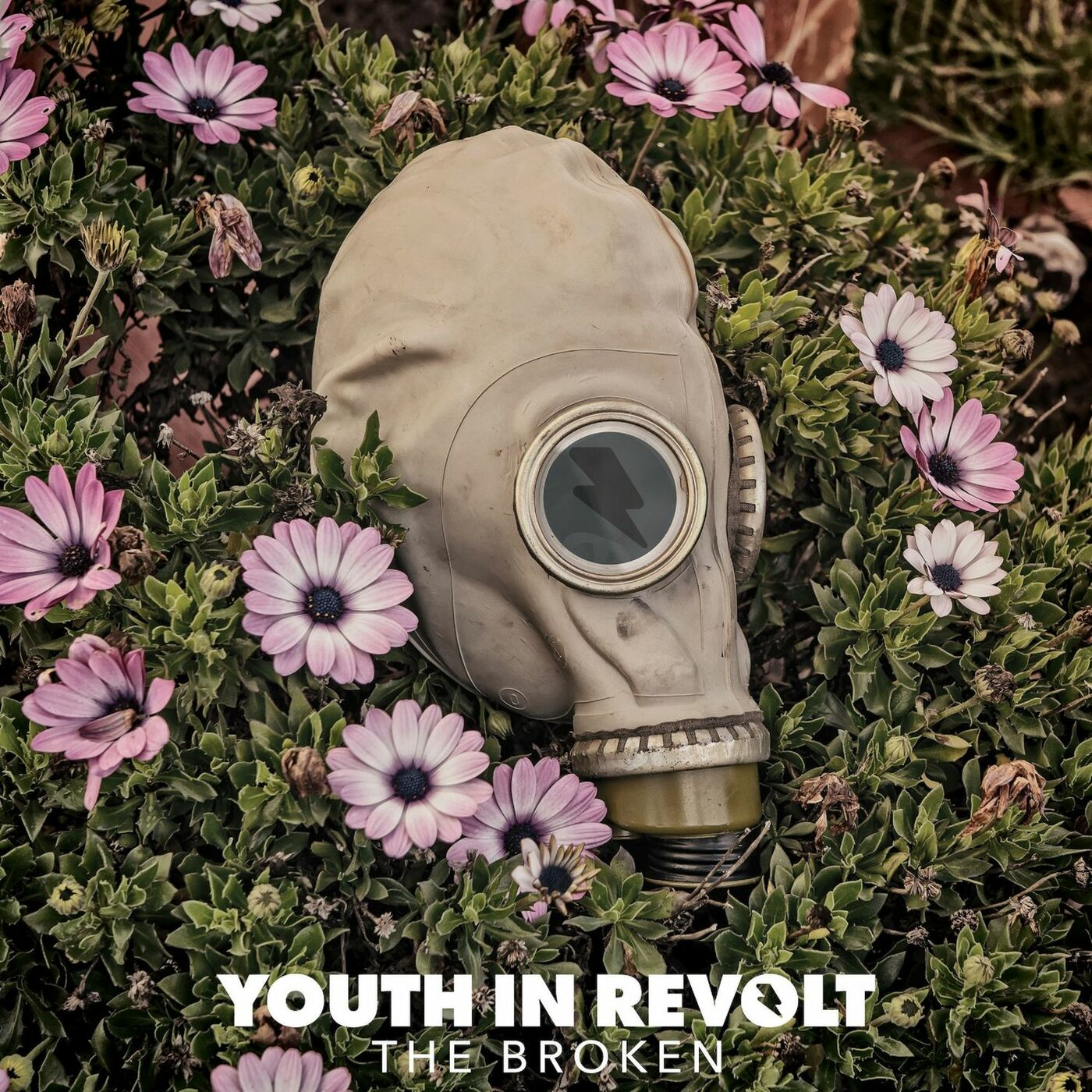 Youth in Revolt - Don't Wait for Me [single] (2017)