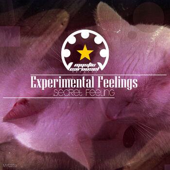 Secret Feeling (Original Mix) cover