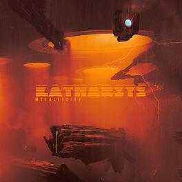 Album cover of Metallicity LP