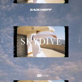 Album cover of Skydive