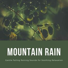Album cover of Mountain Rain: Gentle Falling Raining Sounds for Soothing Relaxation
