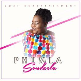 Album cover of Sondzela