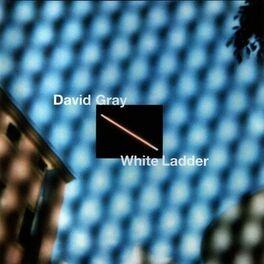 Album cover of White Ladder