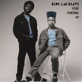 Album cover of Vibe Central