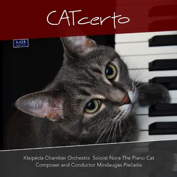 CATcerto cover