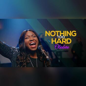 Nothing Too Hard cover