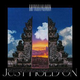 Album cover of Just Hold On (Sub Focus & Wilkinson)