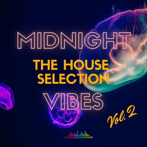 Midnight Vibes The House Selection Vol. 2 [FLAC 16 Bits] (2021)
