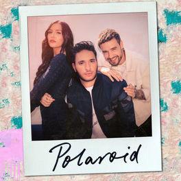 Album cover of Polaroid