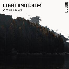 Album cover of # 1 A 2019 Album: Light and Calm Ambience