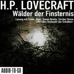 Wälder der Finsternis (ungekürzt) Audiobook
