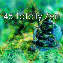 Album cover of 45 Totally Zen